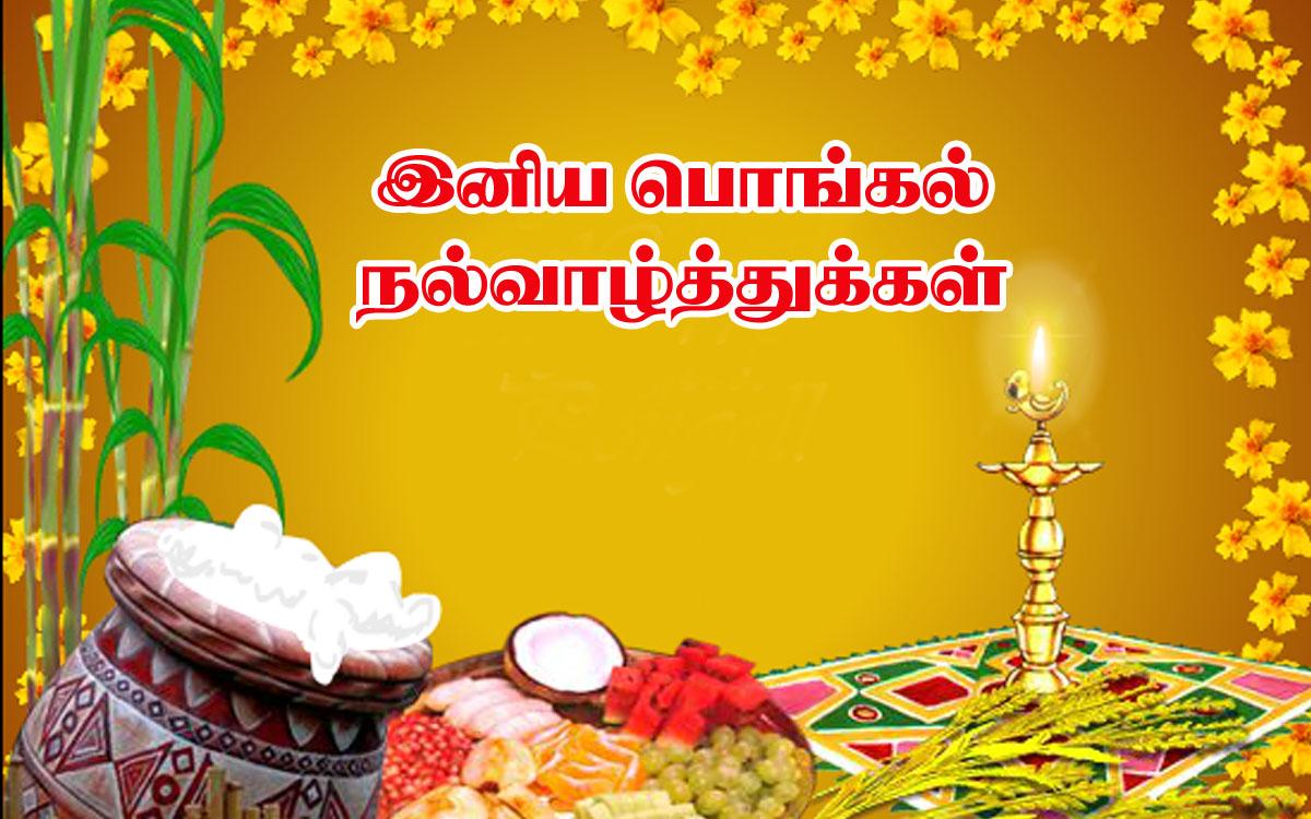இனிய பொங்கல் வாழ்த்துகள் Thamilar-tirunaal
